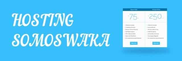 hosting y alojamiento somoswaka