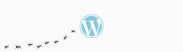 10 consejos de seguridad para WordPress