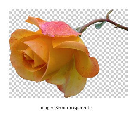 optimizar-imagenes-superPNG-cleaning