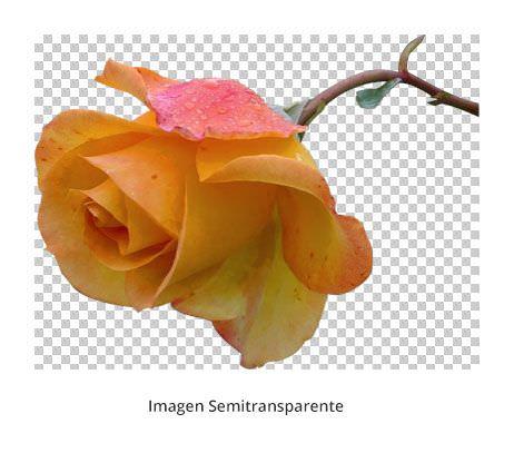 optimizar-imagenes-superPNG-cleaning