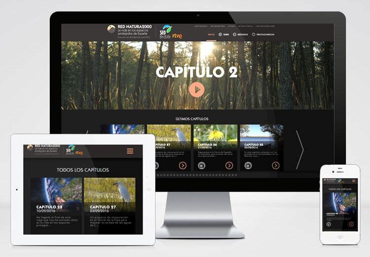diseño interfaz web para SEO BIRDLIFE