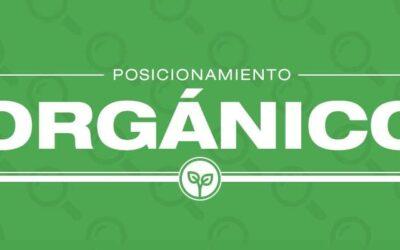 Posicionamiento orgánico: qué es y por qué deberías invertir en él