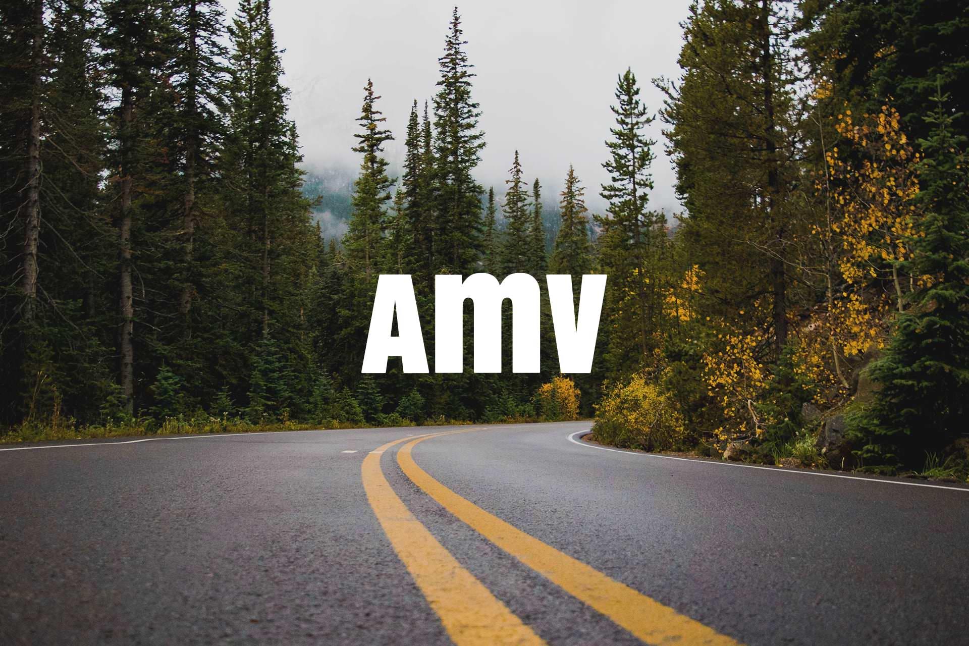 Proyecto AMV